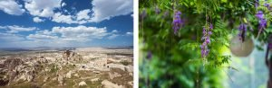 On the left the picture taken in Turkey with the XF 10-24mm f/4 OIS lens and on the right the image taken a village in the North of Portugal with the XF 56mm f/2 R lens.